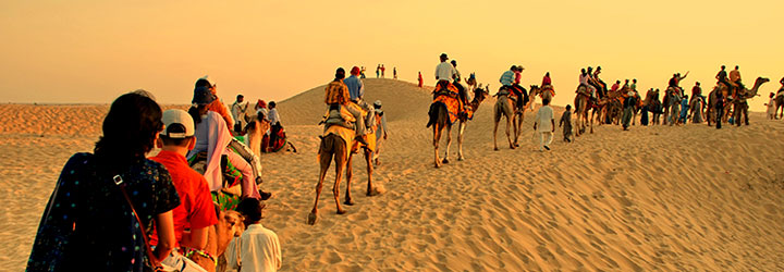 rajasthan-rout-trails