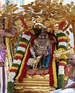 deccan - Andhra pradesh
