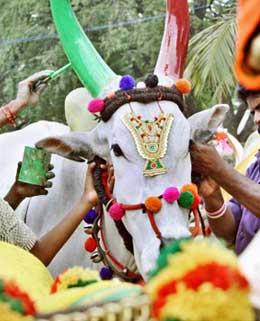 kanuma-festival festivals