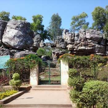 TTD garden