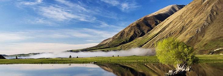 Newzland-trip