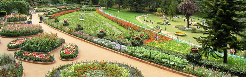 trip-to-queen-ooty
