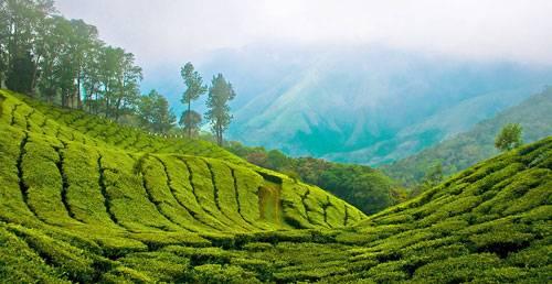 Kerala short round trip