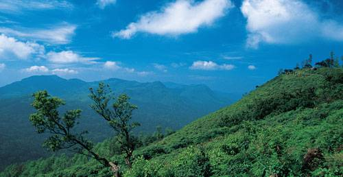 Short tour to Coorg