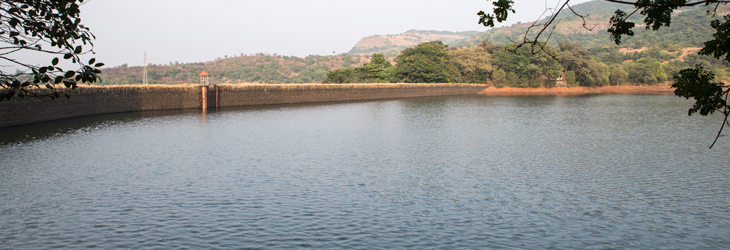 Bushy-Dam