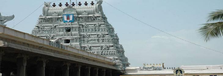 Parthasarathy-swamy-Temple