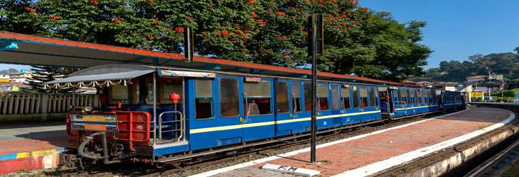 ooty_children_train