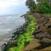 Thirumullavaram