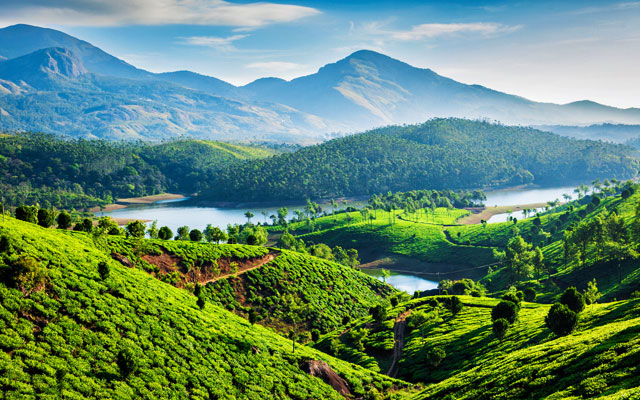 Tea plantations and Muthirappuzhayar River in hills near Munnar, Kerala