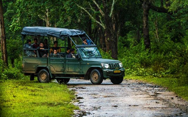Karnataka forest department safari vehicle with tourist going through the forest in Kabini Wildlife Sanctuary, Karnataka, India.