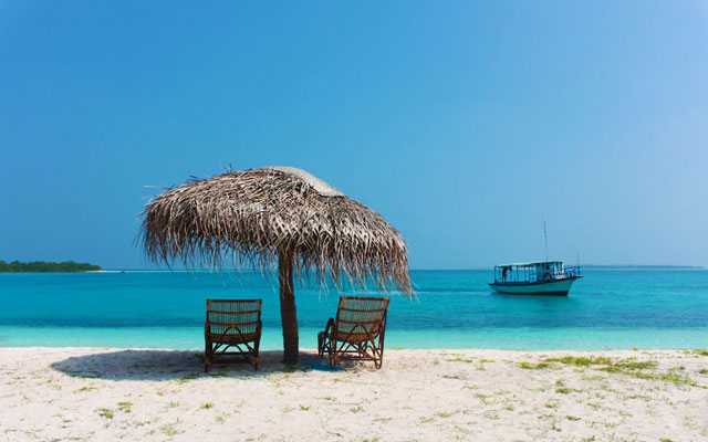 a couple of chairs kept in the shade of a natural beach umbrella at Lakshadweep