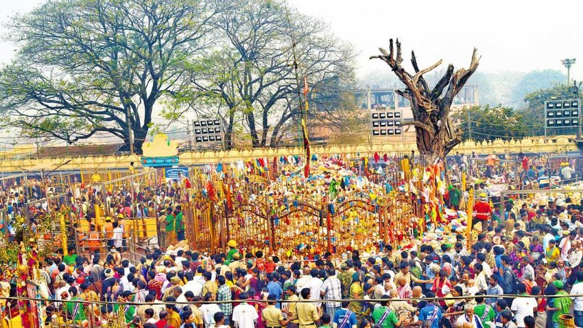 A glimpse people gathering in the world's largest tribal festival in India