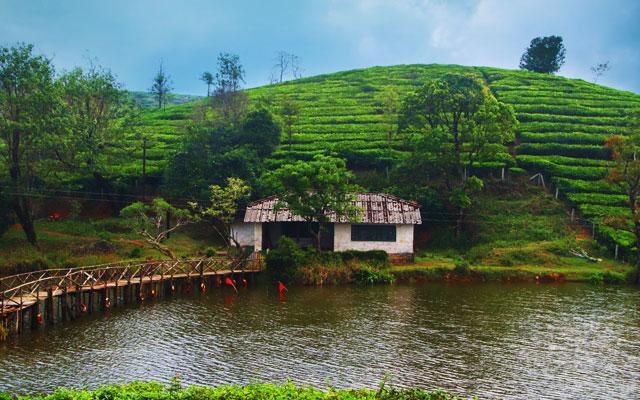 Vagamon Meadow Vagamon is a hill station located in Kottayam-Idukki border of Idukki district of Kerala, India.
