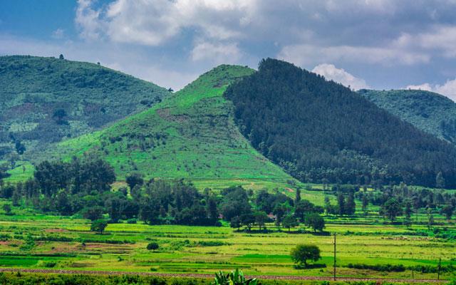 Araku valley in Andhra Pradesh